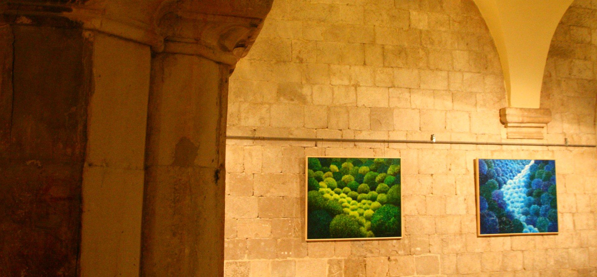 Historické jadro Dubrovník a výstava obrazov, malieb