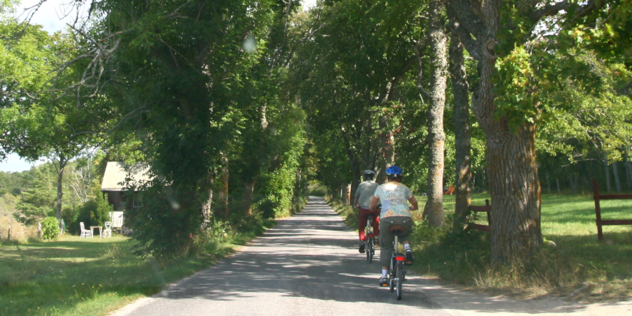 Gotland - cyklisti, cykloturistika vo Švédsku