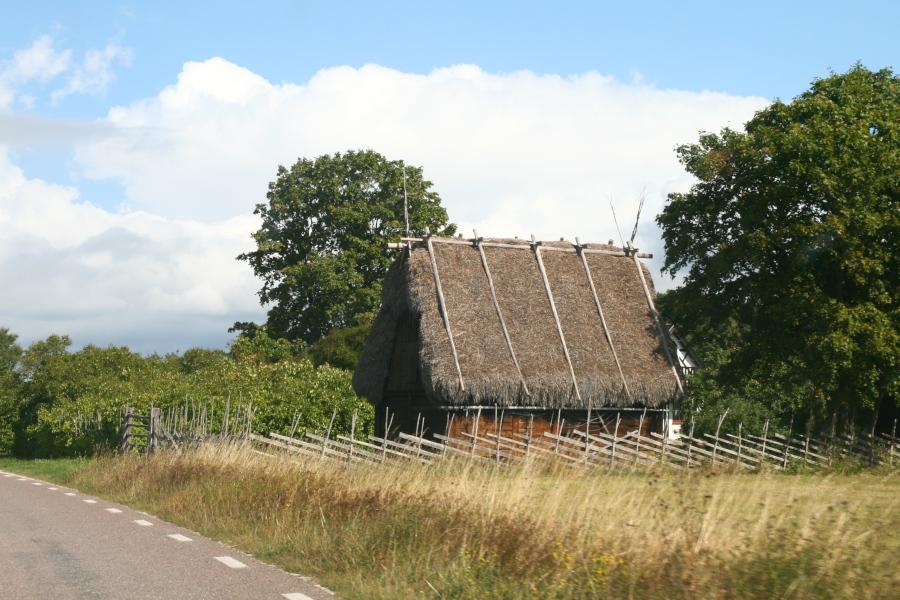 vikingský dom