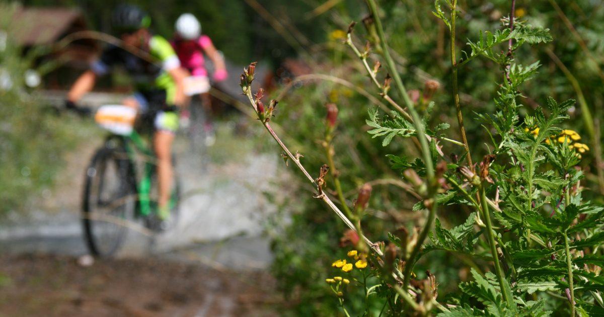Horal – 20 rokov horskej cyklistiky vo Svite