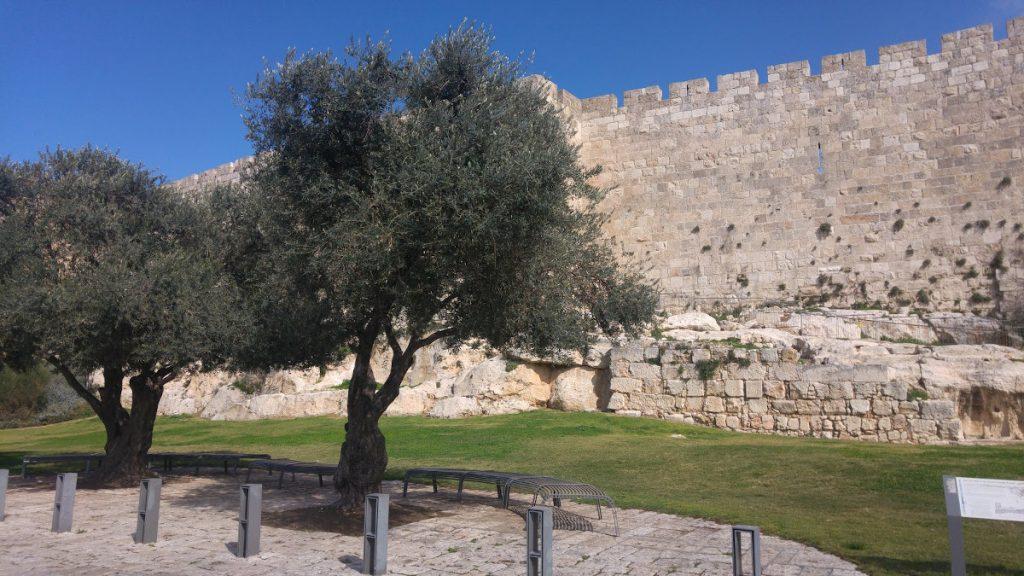 Čo ukrýva Jeruzalem? Tieto tri netradičné miesta musíte vidieť! 14
